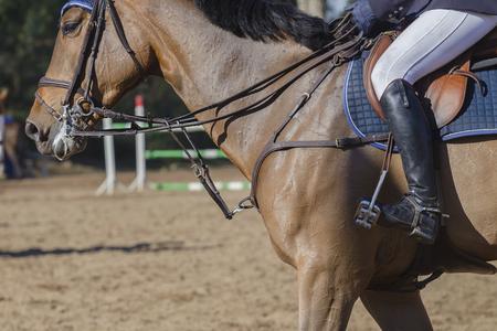 horse show: Horse show jumping rider  closeup leg boot saddle detail.