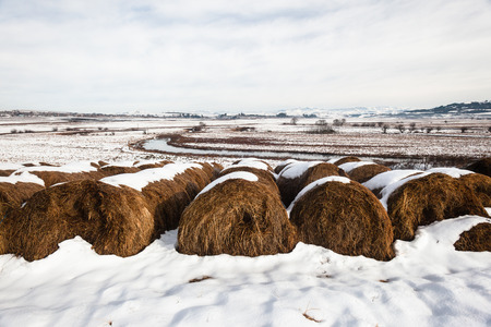Agriculture farm grass bales winter snow mountains landscape Stockfoto