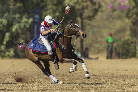 kingdoms: Polocrosse sport world-cup United Kingdoms Jason Webb play action at Shongweni equestrian fields Editorial