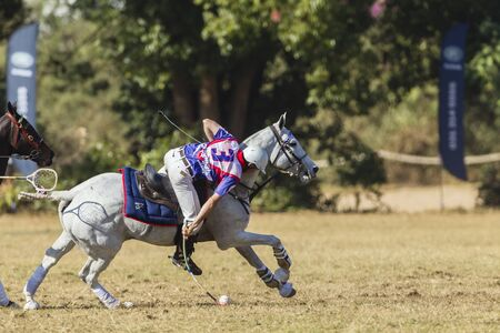 worldcup: Polocrosse sport world-cup United Kingdom Jason Webb play action at Shongweni equestrian fields