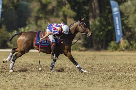 worldcup: Polocrosse sport world-cup United Kingdom Rachael Duhig play action at Shongweni equestrian fields Editorial