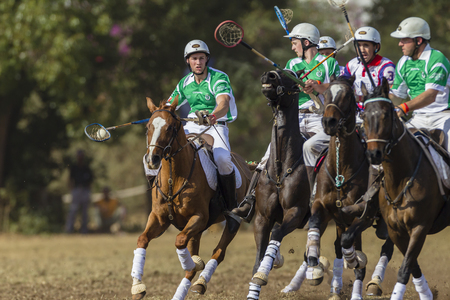 worldcup: Polocrosse sport world-cup Irelands Mark Hall play action at Shongweni equestrian fields Editorial