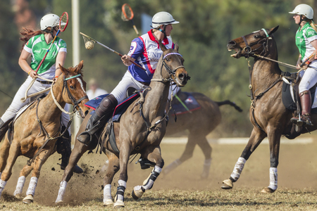 worldcup: Polocrosse sport world-cup United Kingdom Kerry Bean play action at Shongweni equestrian fields