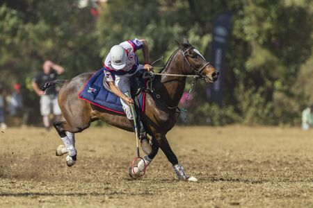 webb: PoloCrosse United-Kingdom Player Jason Webb action play at world cup polo-cross championship games at Shongweni equestrain fields outside Durban.