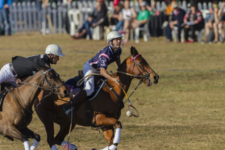 worldcup: Polocrosse sport world-cup game action USA v New Zealand player riders at Shongweni equestrian fields