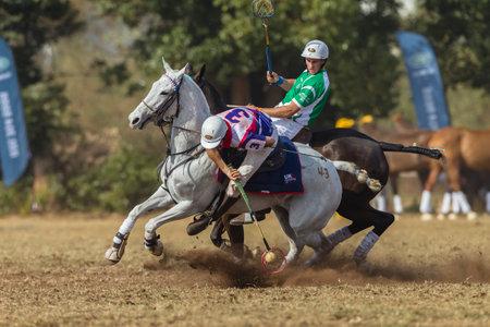 webb: Polocrosse sport world-cup United Kingdom Jason Webb v Ireland play action at Shongweni equestrian fields Editorial