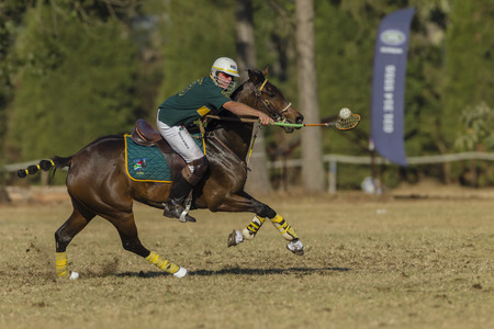 worldcup: Polocrosse sport world-cup game action South-Africa Jannie Steenkamp player rider at Shongweni equestrian fields