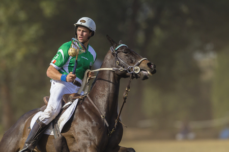 worldcup: Polocrosse sport world-cup game action Ireland player rider Mark Hallat Shongweni equestrian fields