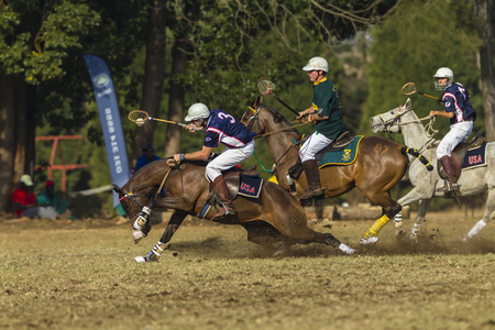 worldcup: Polocrosse sport world-cup game action South-Africa v USA women player riders at Shongweni equestrian fields