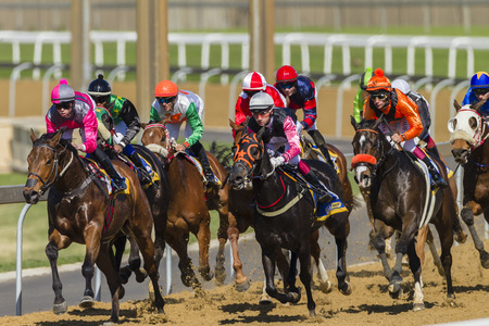 Horse racing jockeys and horses in closeup, speed action photo Publikacyjne