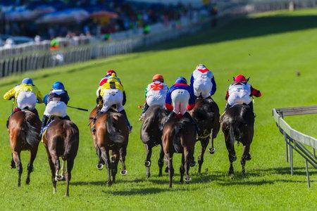 horse racing: Jinetes y caballos en primer plano de carreras de caballos, la acción de la velocidad de la foto Editorial