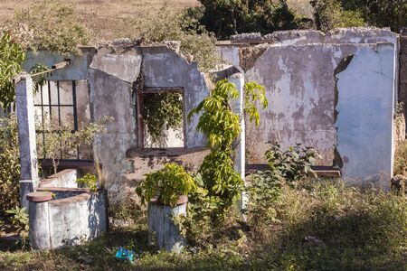 rural countryside: House ruins overgrown destroyed building in rural countryside