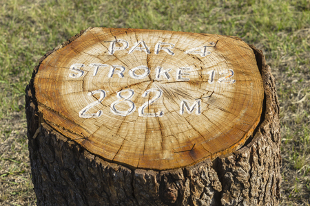 routed: Golf hole number stroke information  wood log marker