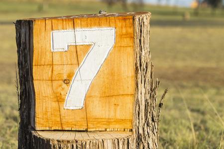 numeros: Número de sesión de siete 7 información del registro de la madera marcador