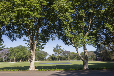 cricket field: Cricket field oval grounds scenic landscape Stock Photo