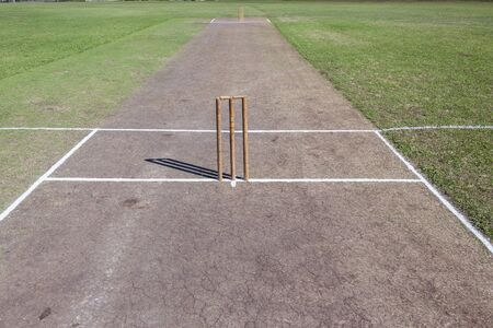 cricket field: Cricket field game pitch wickets bails white crease grass arena.