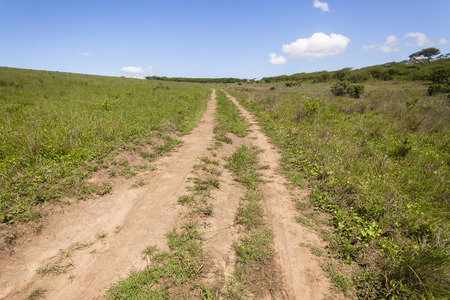 hillside: Dirt road tracks hillside summer blue  wilderness  landscape