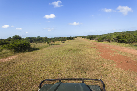 airstrip: Grass airstrip for aircraft plane landings in rural wilderness park reserves