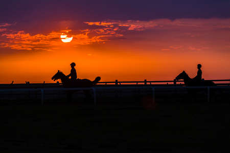 racehorses: Race horses riders training dawn sunrise silhouetted track. Stock Photo