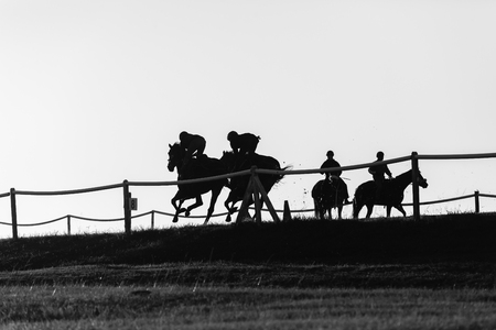 silhouetted: Race horses rider jockey training track action morning silhouetted landscape.