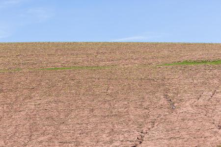 harvested: Farming crops sugarcane valley harvested hillside landscape