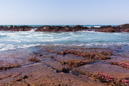 ocean waves: Rocky ocean coastline waves tidal water pools .