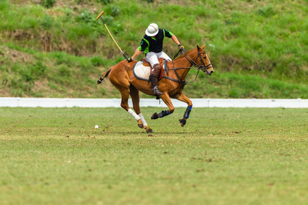 Polo player pony game action Stock Photo