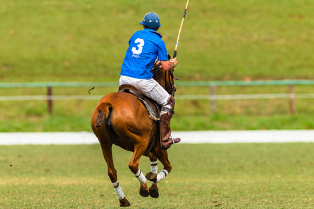 polo player: Polo player pony game action Editorial