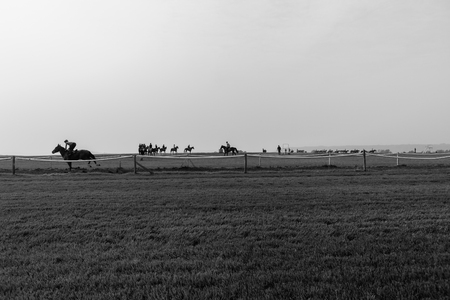 silhouetted: Race horses groom riders training silhouetted black and white landscape. Stock Photo