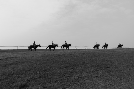 silhouetted: Race horses groom riders training silhouetted black and white landscape. Editorial