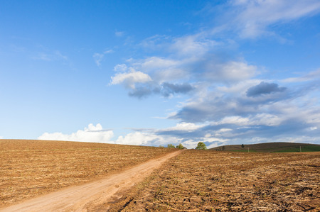 hillside: Hillside field harvested crops dirt road over scenic farming landscape