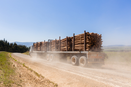 Truck vehicle transporting cut forest tree logs on dirt road mountain countryside.