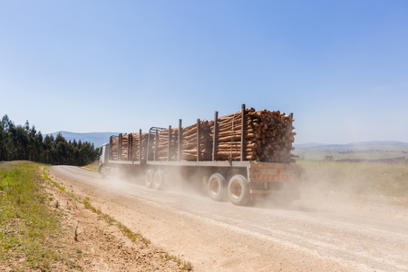 dirtroad: Truck vehicle transporting cut forest tree wood logs on dirt road mountain countryside.