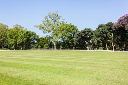outfield: Cricket field outfield boundary grounds summer sport.