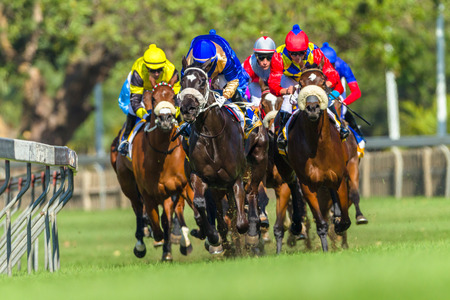 馬のレース動物騎手のトラックのアクション 報道画像