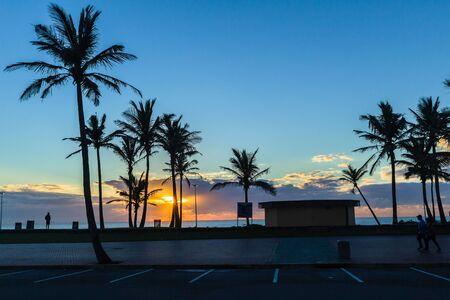 Dawn ocean sunrise along beach promenade with silhoutted palm trees in car park.
