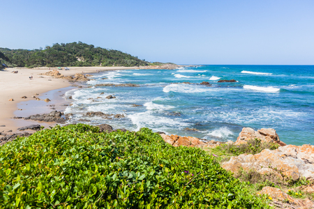 Beach cove with blue ocean wave waters to horizon with rocky coastline and green vegetation landscape