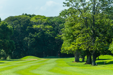 Golf course fairway with trees to hole flagstick green summer landscape.