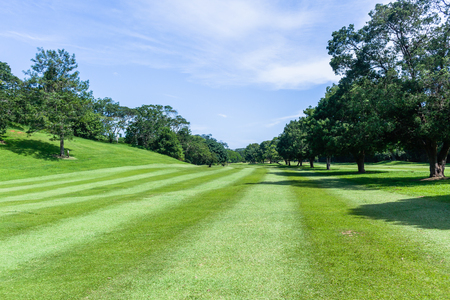 Golf course hole fairway trees prestine towards  flagstick green scenic summer coastal course Stock Photo