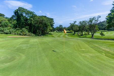Golf course narrow fairway through trees both sides towards hole flagstick green scenic summer coastal course.