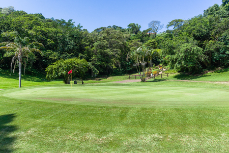 Golf course hole green  dogleg trees scenic summer coastal course.