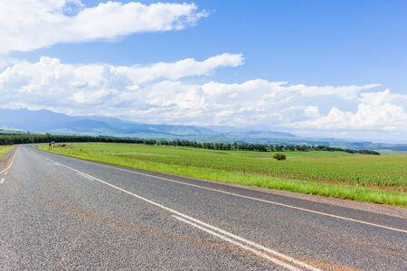 Strada panoramica percorso di viaggio che si snoda attraverso terreni agricoli alberi verdi mais colture di mais cielo blu nuvole estate paesaggio montano. Archivio Fotografico