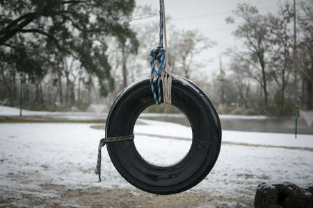 lonely old tire swing waits for winter to end and spring to return