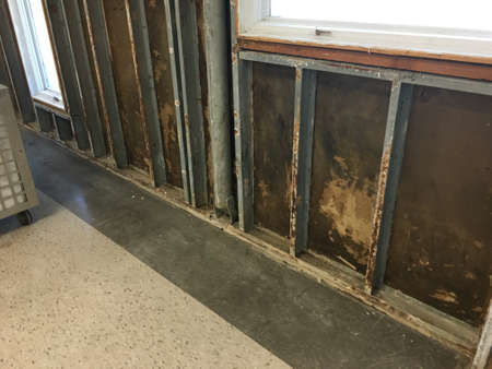 corroded wall studs and mold growth on walls