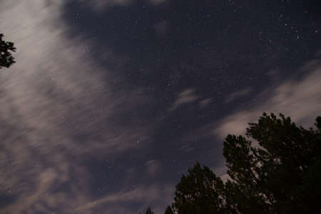 night sky and stars in rural Louisiana Foto de archivo