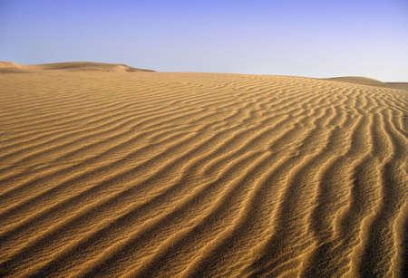 Sands in Maspalomas, Gran Canaria Stock Photo - 4137672