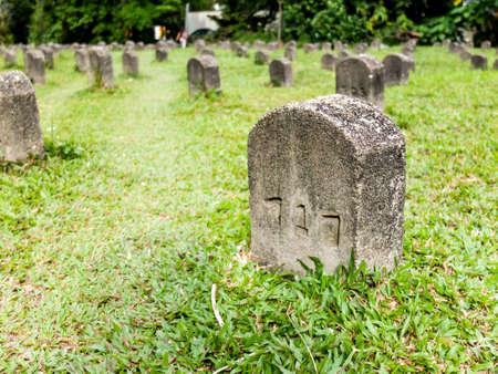 tumbas: tumbas filas ordenadas