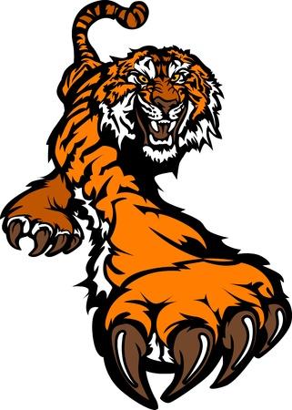 garra: Tigre mascota cuerpo rondando gr�fico
