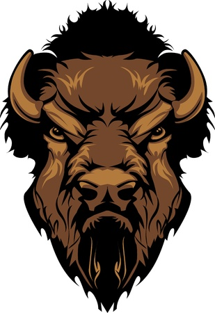 bull head: Buffalo Bison Mascot Head Graphic