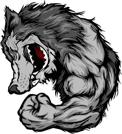 flexing: Wolf Mascot Flexing Arm Cartoon Illustration